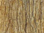 1722-Walnut Travertine