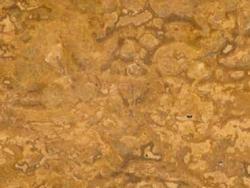 1637-Yellow Travertine