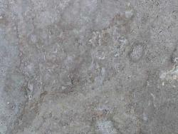 1409-Silver Travertine