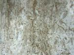 1335-Beige Travertine